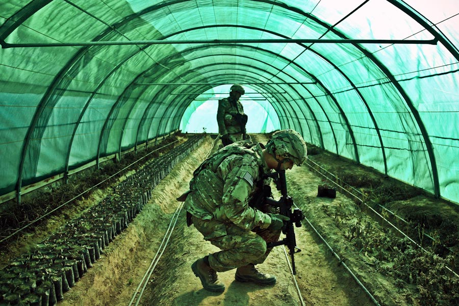 Kentucky National Guard Soldiers inspect a greenhouse in Mahmod-e Raqi district, Kapisa province, Afghanistan