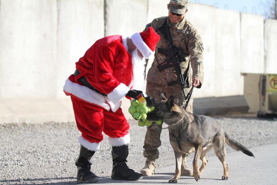 Chief Warrant Officer 2 Brian Boase, of the 101st Airborne Division (Air Assault), delivers tennis balls to a military working dog while dressed as Santa Claus